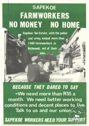 SAPEKOE FARMWORKERS : NO MONEY NO HOME AL2446_0770 produced by the Food and Allied Workers Union (FAWU), Durban. This poster depicts how the Food and Allied Workers Union (FAWU) exposed the oppressive working conditions on a tea estate and how they demanded union recognition.
