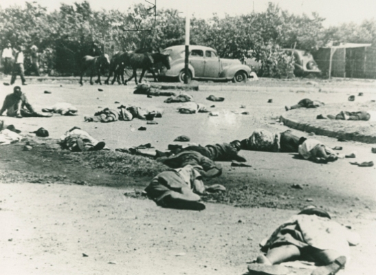 Sharpeville massacre, 21 March 1960. Source: The International Defence and Aid Fund (IDAF). Archived as SAHA collection AL2547_24.3.5.